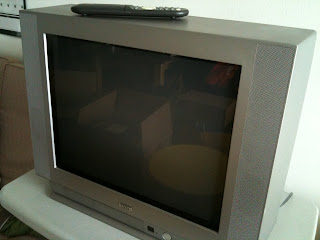 Moving Sale: Sanyo 22 Flat Screen TV w/ remote control USD 25 and instruction manual
