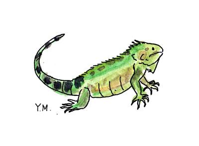 Iguane by Yukié Matsushita