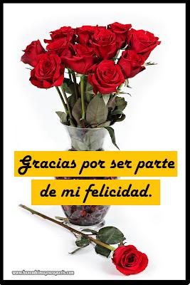 Gracias mensaje en Rosas Rojas