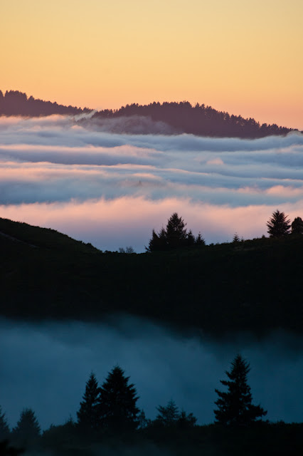 Santa Cruz Mountains, California, USA