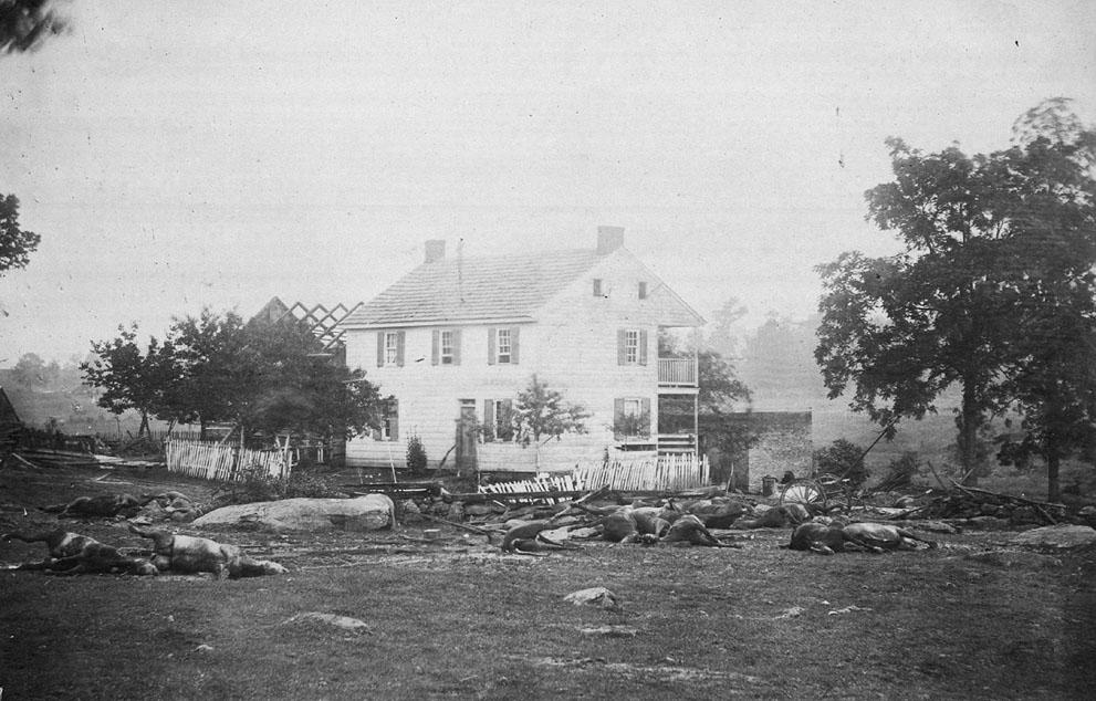 Caballos muertos tras la batalla de Gettysburg, en julio de 1863