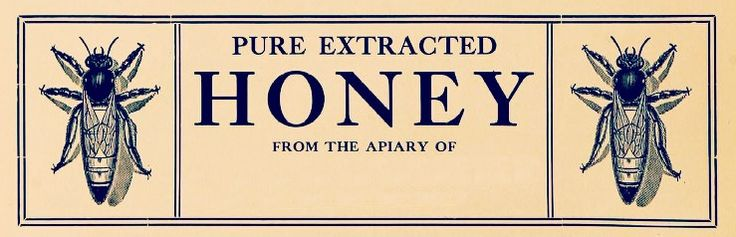 pure extracted honey