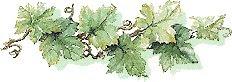 Le DOMAINE SAINT-GEORGES géré par Jany et Philippe ,et leur fille,  propose un vin de qualité.