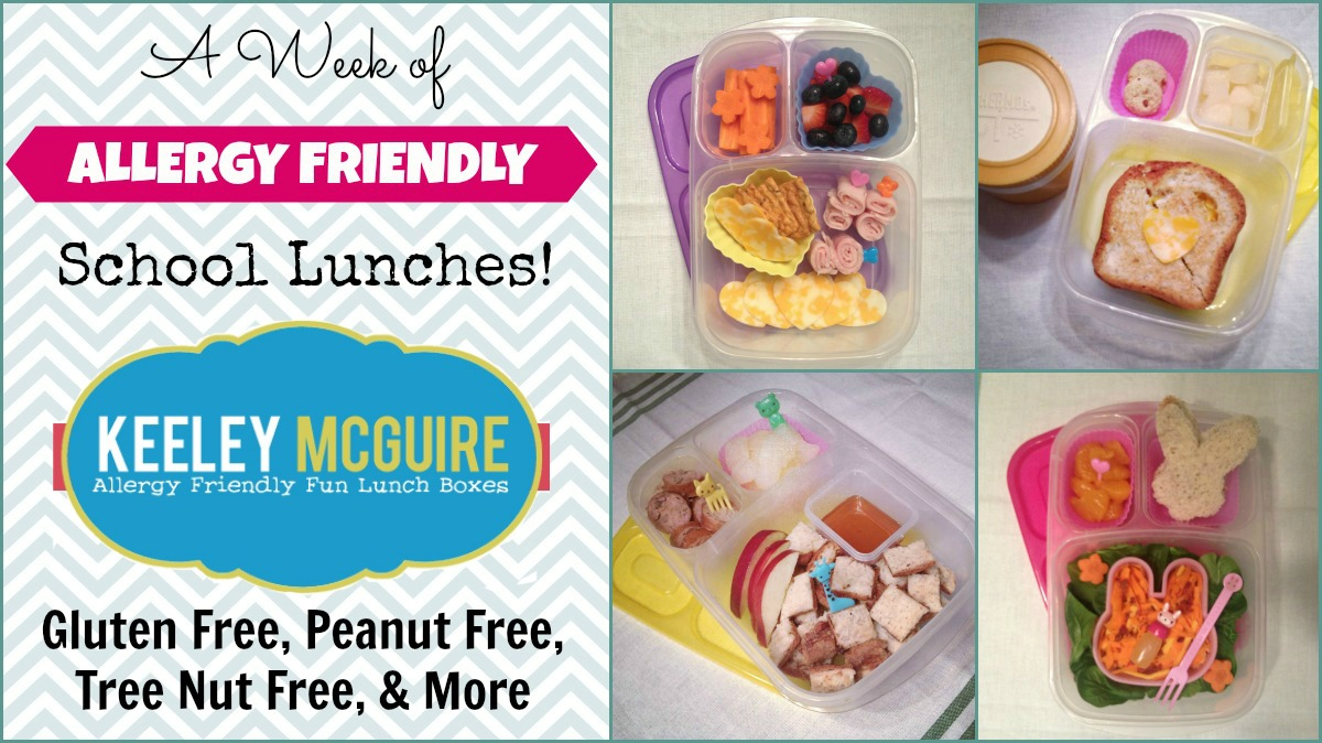 gluten free allergy friendly lunch made easy school allergy free bento round up. Black Bedroom Furniture Sets. Home Design Ideas