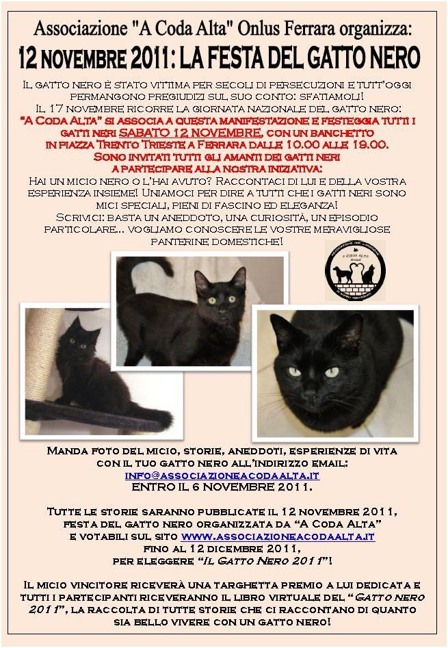 Rumore Di Fusa Hai Un Gatto Nero Partecipa A Gatto Nero 2011