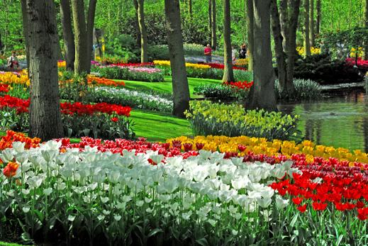 Kumpulan Foto Taman Bunga Terindah Di Dunia   Renungan Harian Cahaya ...
