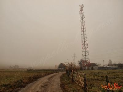 Antena GSM in ceata