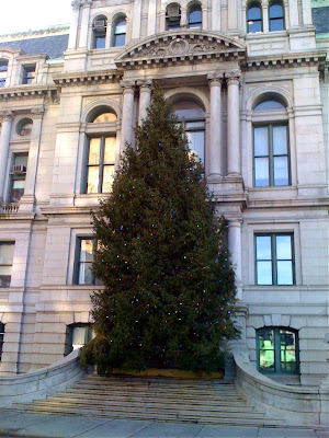 Providence City Hall Christmas Tree