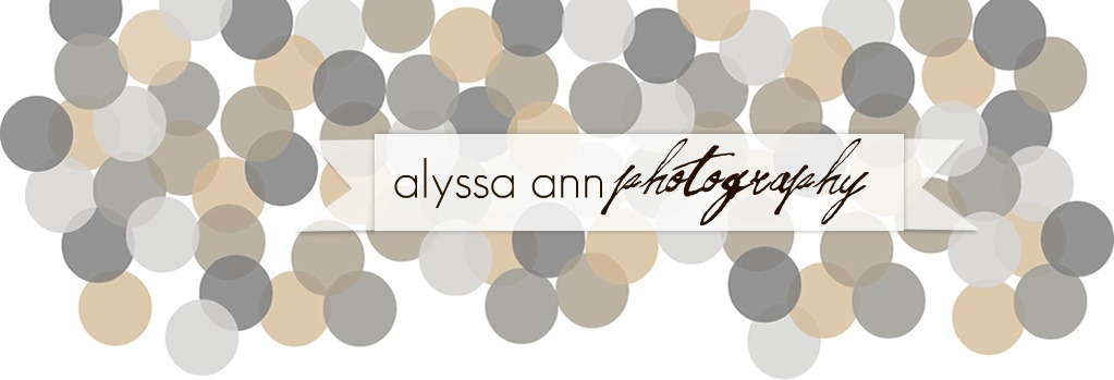 Alyssa Ann Photography