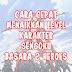 Cara Cepat Menaikkan Level Karakter Sengoku Basara 2 Heroes