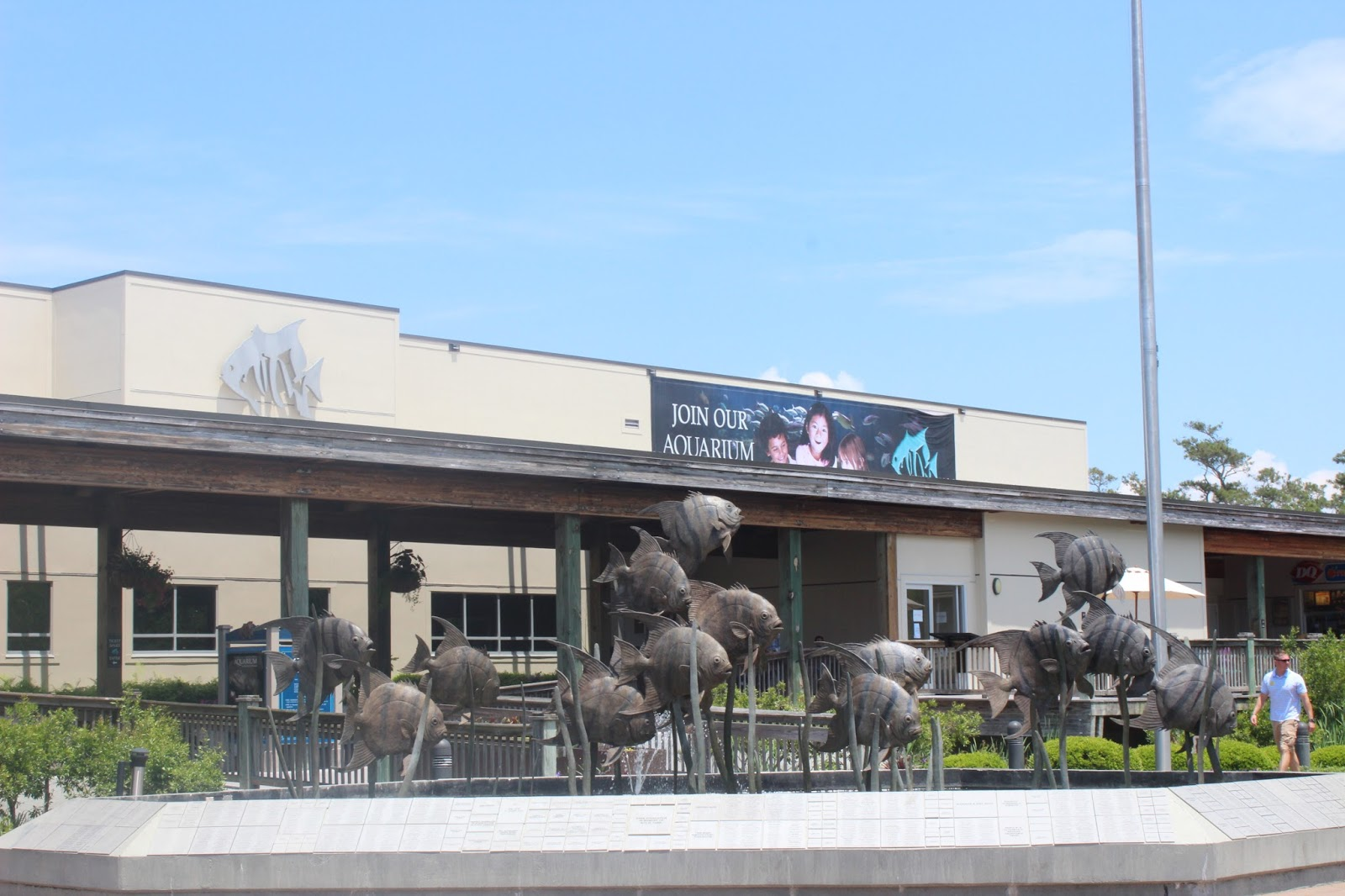 The Largest Aquarium In North Carolina Pine Knoll Shores