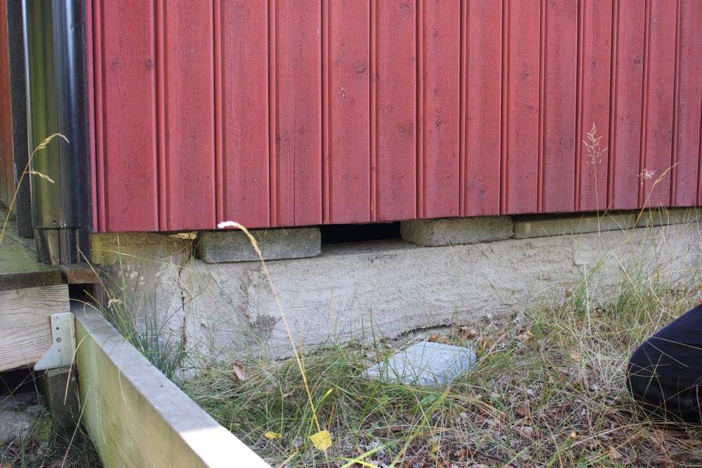 Thomas tog bort en stenplatta för att försöka se in, men det var för mörkt. Stenarna var bara ditlagda för att troligen täta på vintern. Man bör nog öppna upp på sommaren så det får fukta ur ev. fukt. Råttor kan trivas här också. Troligen har  ingen bott här på vintern trots att man försökt tilläggsisolera.
