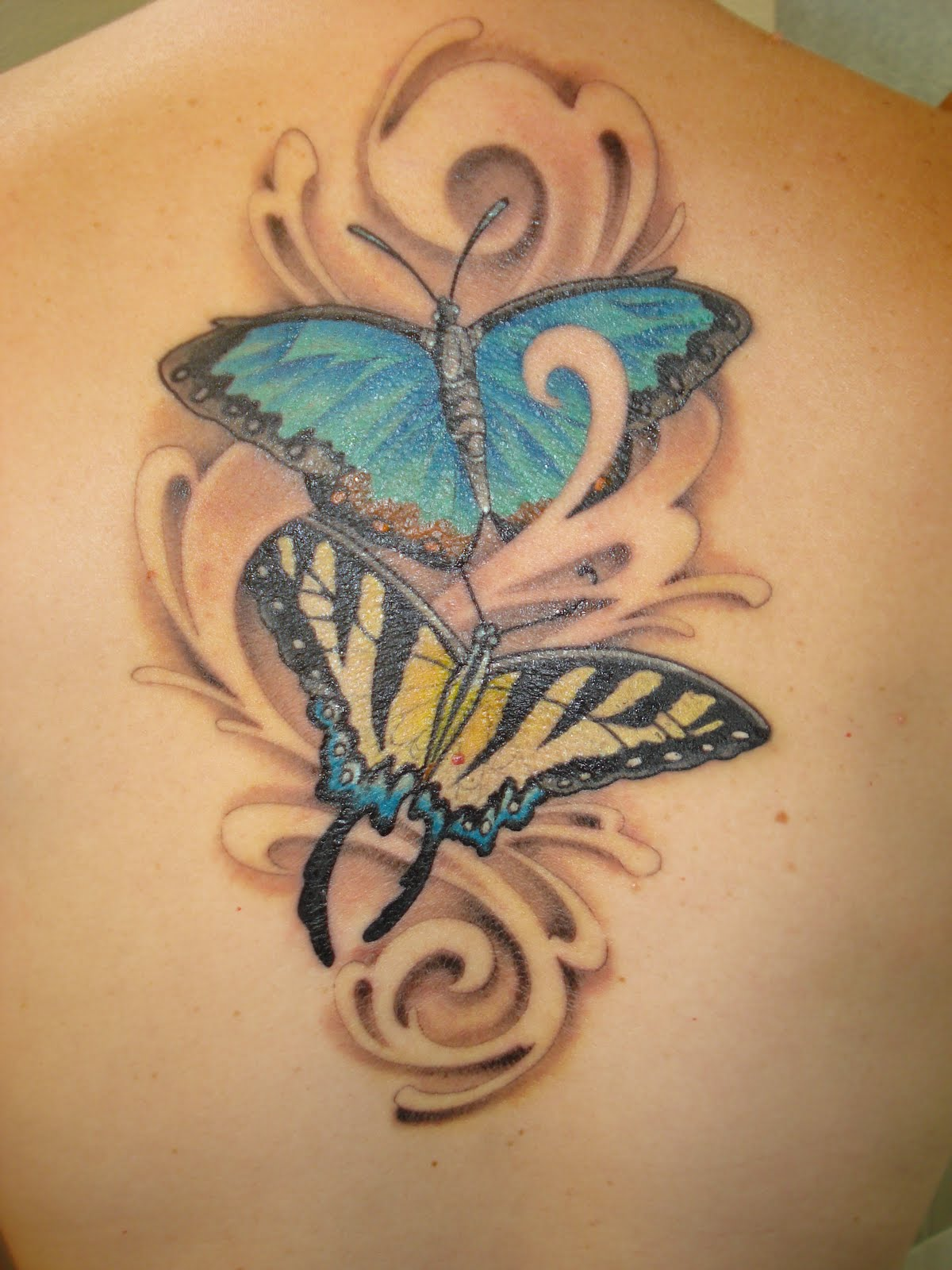 Sweetkisses shop butterfly tattoos for Butterfly tattoos gallery