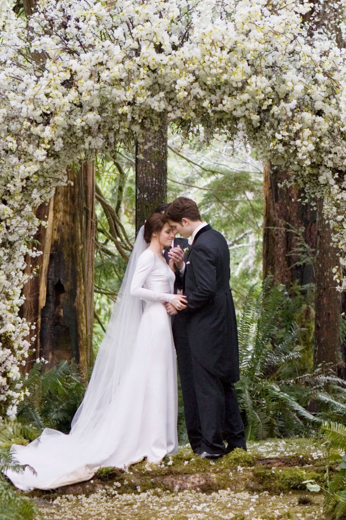 memoirs of a redhead bella swan wedding dress and shoes by ch