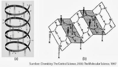 Struktur sekunder protein