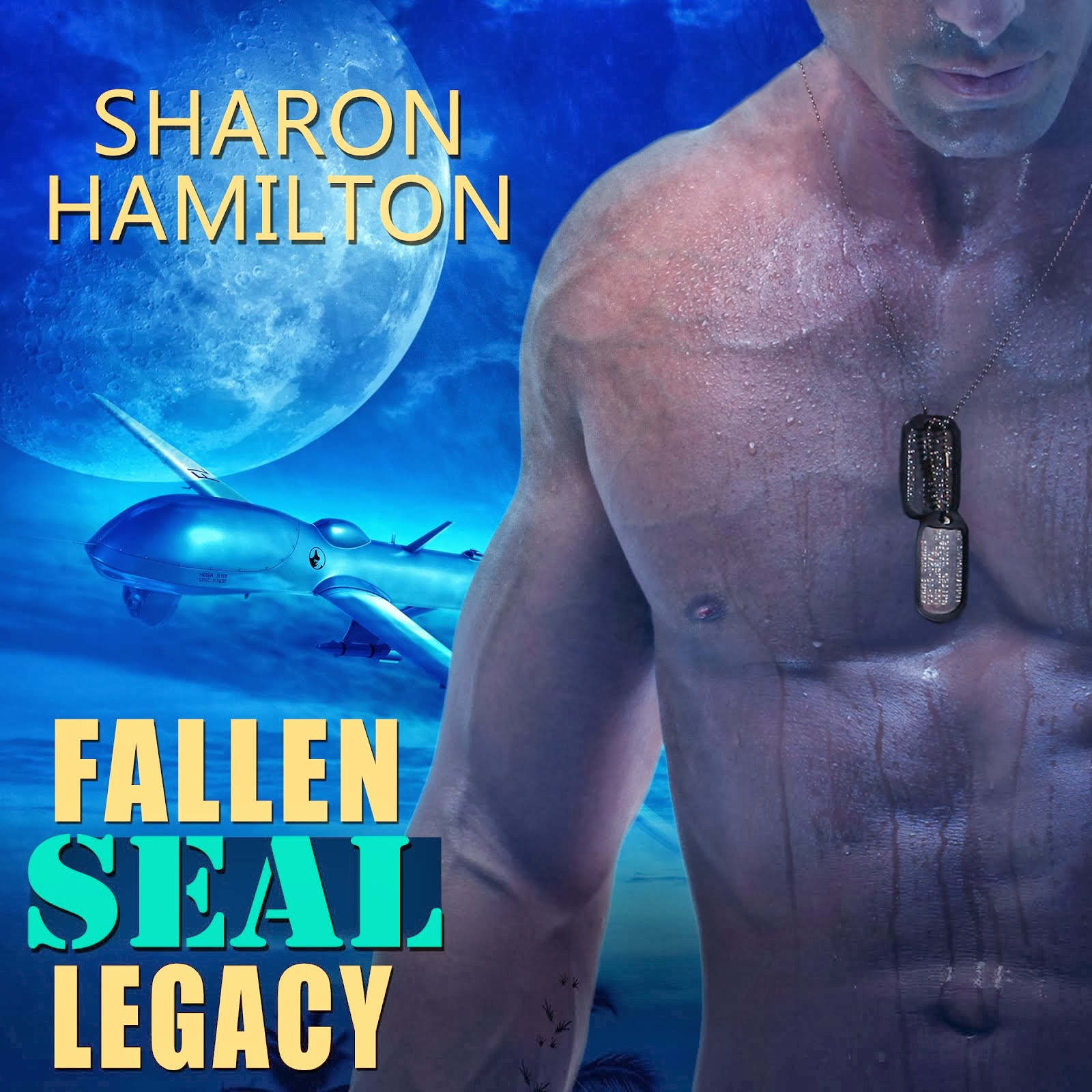 Fallen SEAL Legacy available on Audio Now!