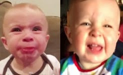 Best Funny Videos – Babies Eating Lemons for First Time