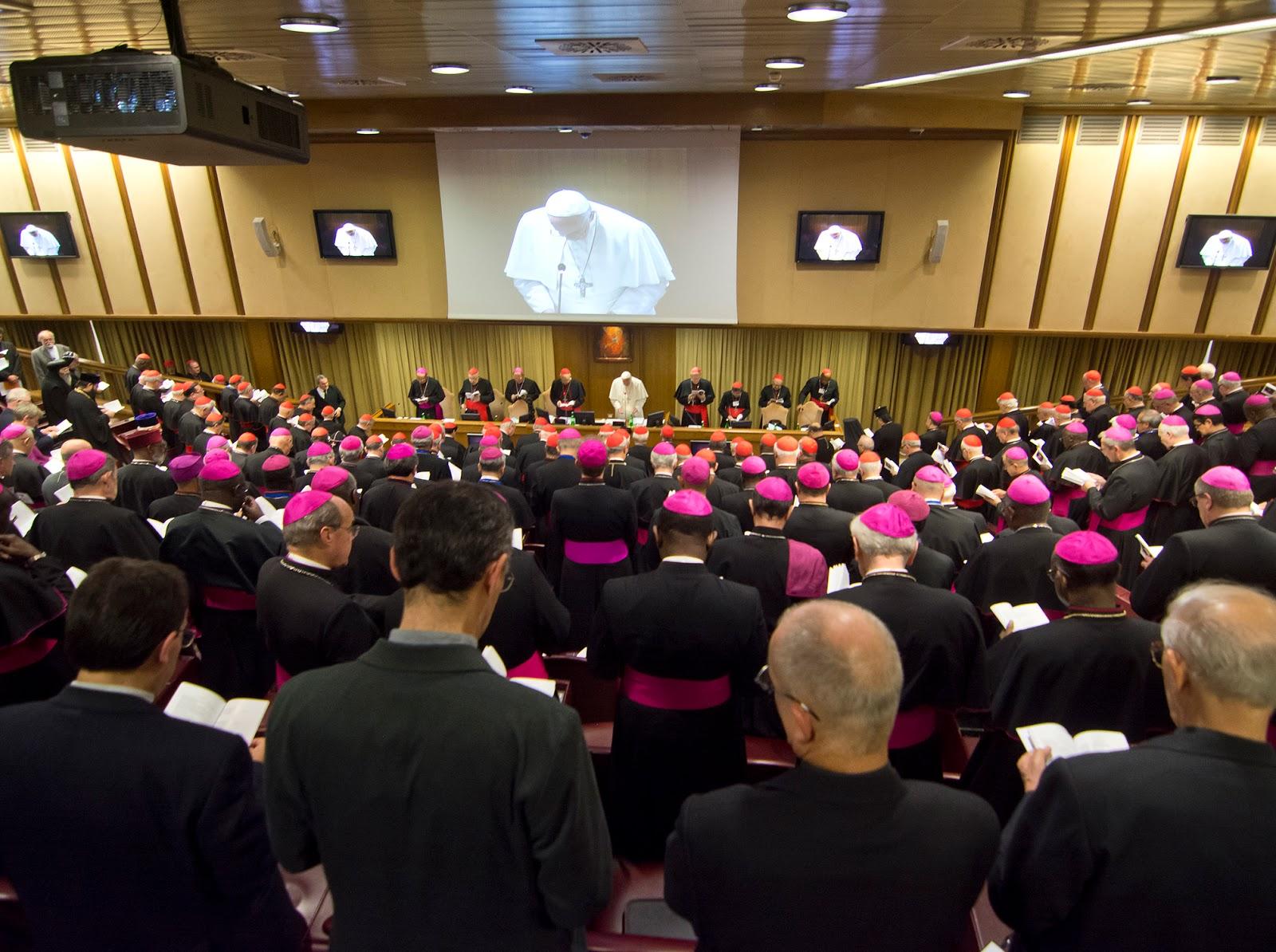 Resultado de imagem para Desafios à Igreja Sínodo dos Bispos da América