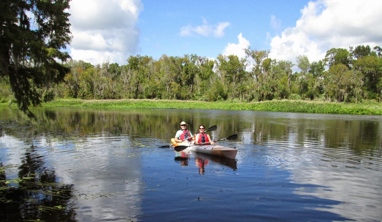 Wekiva River Monkeys Them The Wekiva River