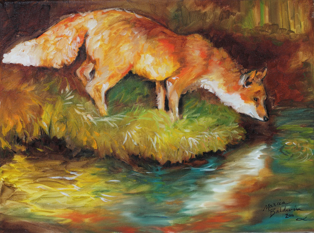 Red Fox I An Original Oil Painting  By Marcia Baldwin