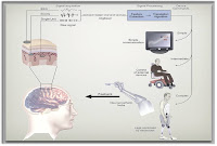 Brain Computer Interface2