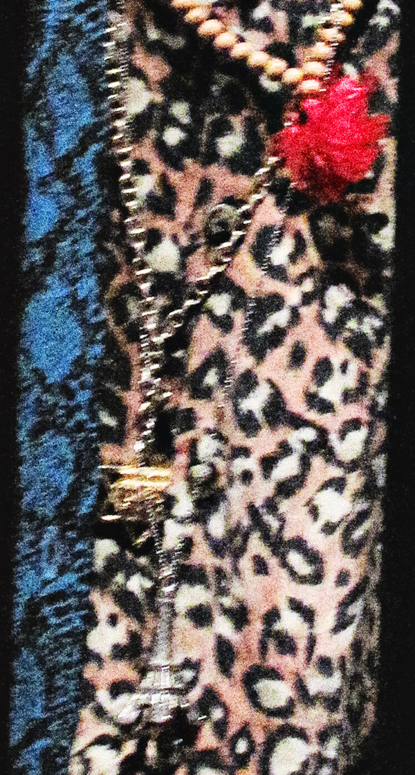 Abstract pattern, Eiffel Tower and star charms against the leopard print shirt