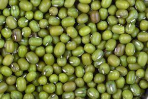 kacang hijau