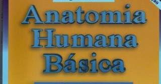 Aspectos gerais da anatomia humana