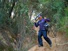 Tram final de la baixada de la Serra de Les Colomeres