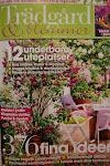 Växthusmadam i Trädgård och blommor