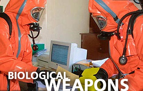 Chemical weapons essay