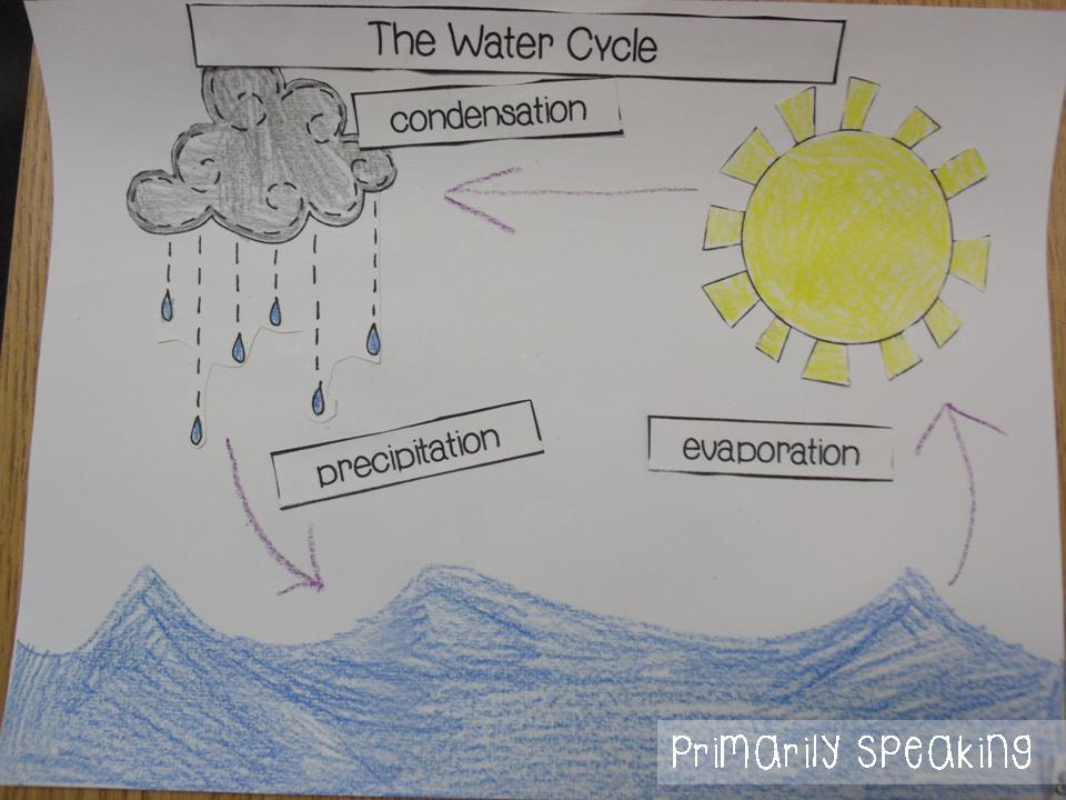 essay writing about water cycle