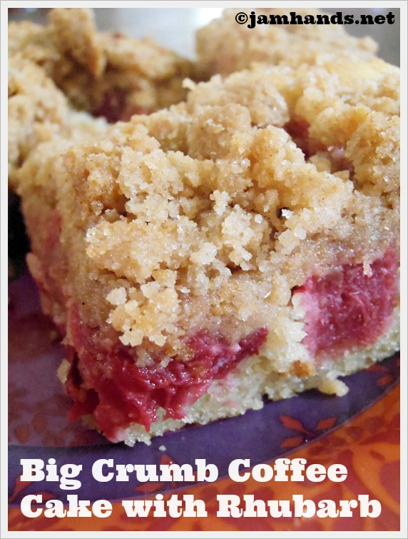 Jam Hands: Big Crumb Coffee Cake with Rhubarb