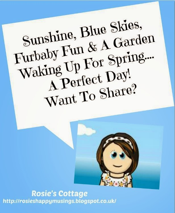 A Perfect Day! Want To Share With Me?
