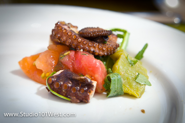 san luis obispo wine & food photographer