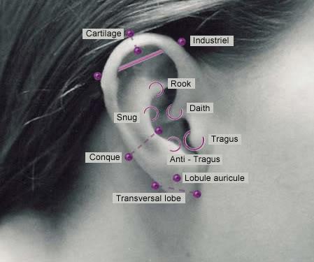 Culture Has A New Face: Ear Piercing Ear Piercings Names
