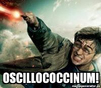 harry potter spell hex jinx homeopathy joke meme homeopatía hechizo varita wand
