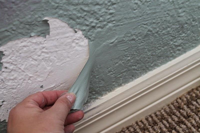 Mengatasi cat dinding berjamur,mengelupas dan luntur