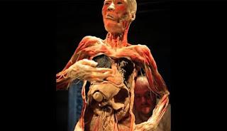 Bagian Organ Tubuh Yang Akan Hancur Setiap Kali Anda Begadang
