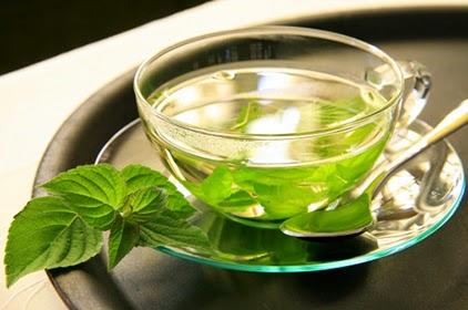 النعناع, شاي النعناع, مسكن للمغص, فوائد النعناع, زيت النعناع, صحة, الطب البديل,