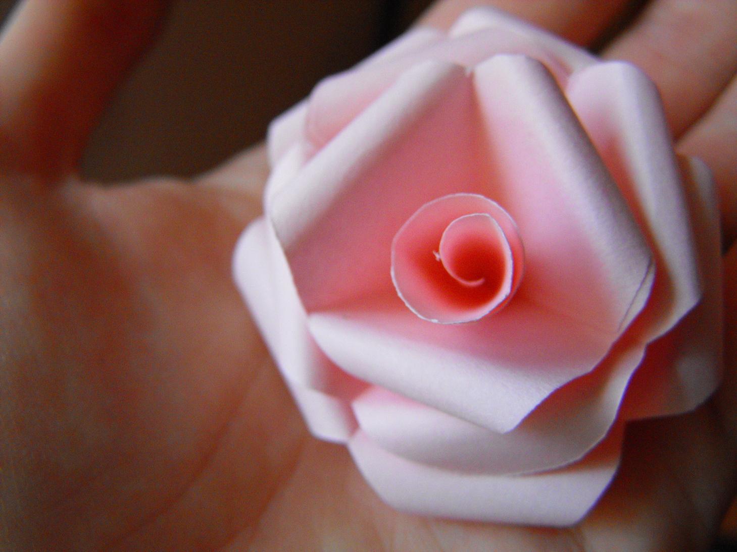 Clara's Paper Garden: Tutorial kirigami rose - photo#38