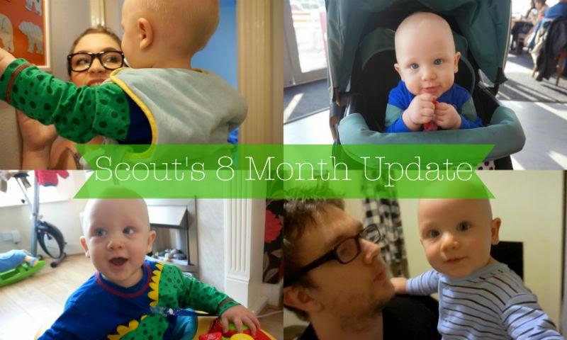 whenflowersfall, 8 month, postpartum, update, youtube