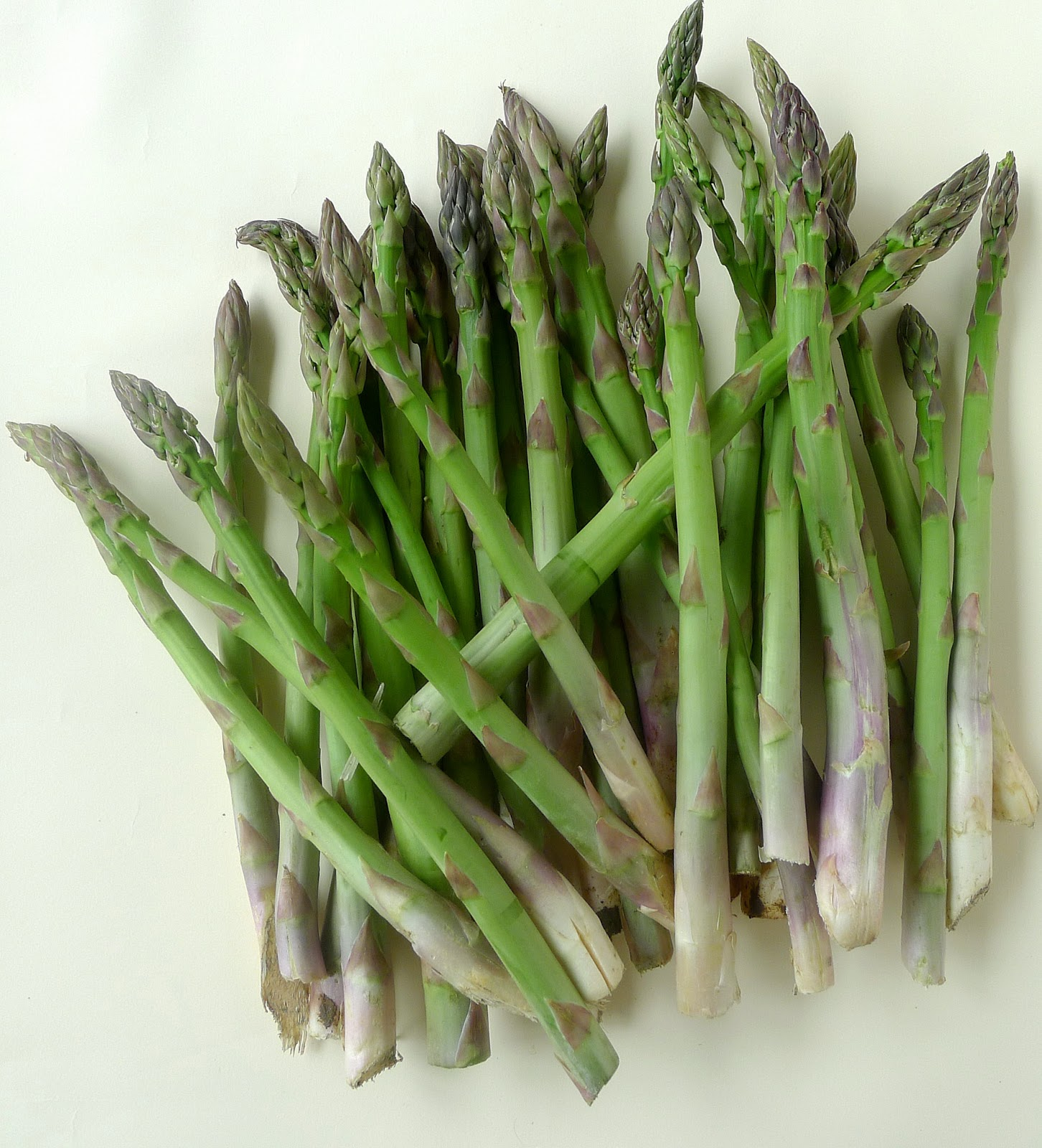 cultivated green asparagus in spain asparagus comes in three sorts the ...