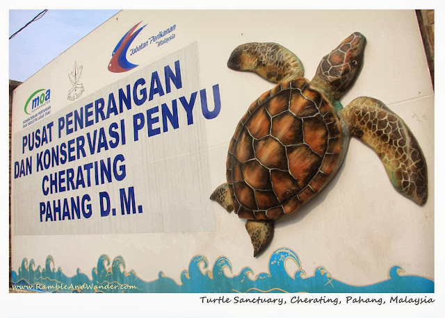 Malaysia: Turtle Sanctuary in Cherating, Pahang