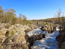 Le Potomac au printemps