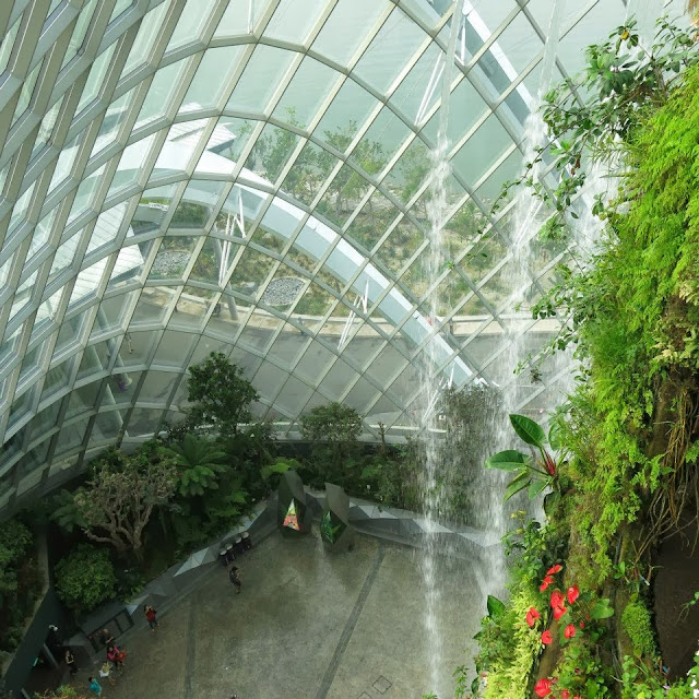 Gardens by the bay cloud forest flower dome
