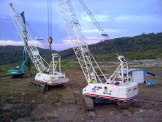 RENTAL CRANE SECOND DAN BRAND NEW
