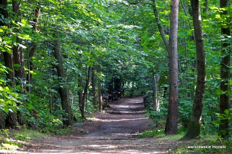 ścieżka Warszawa Wola park las alejki tory kolej Trasa Toruńska drzewa zieleń plac zabaw
