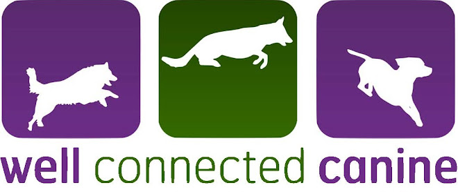 The Well Connected Canine Blog