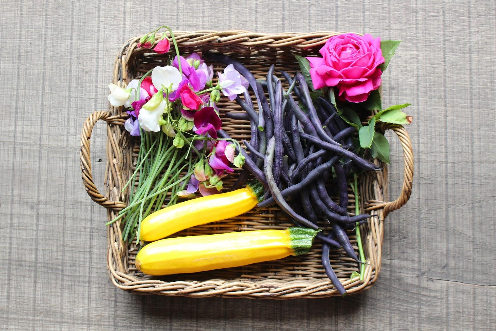 Vegetable garden flowers vegetables